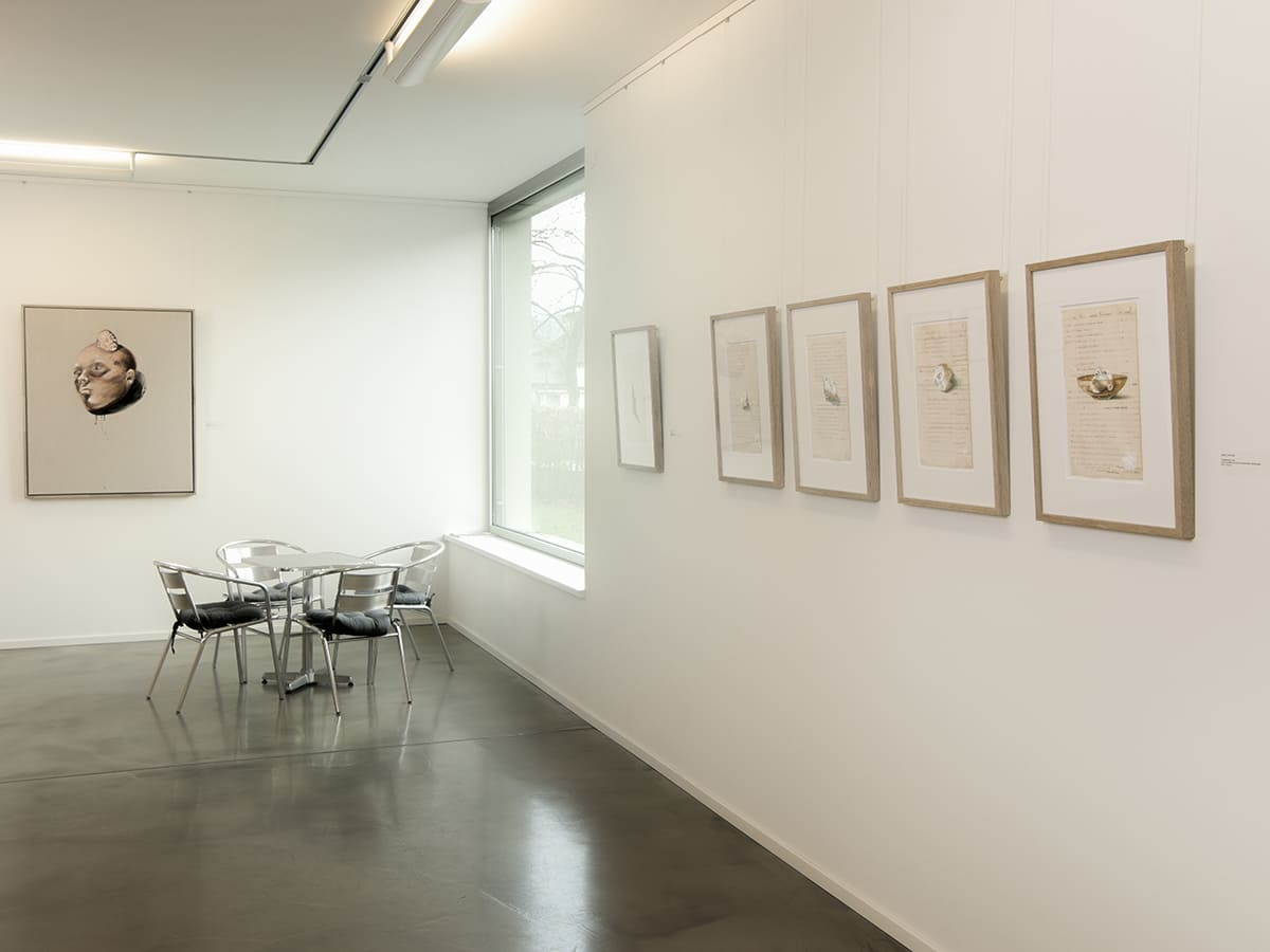 Ausstellung_face-to-face_Rohnerhaus_2017_02